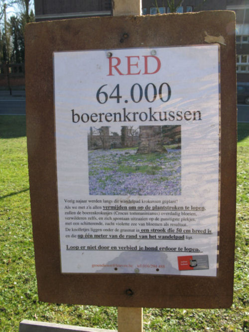 Red de krokussen