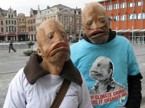 Vismensen gesignaleerd in Leuven