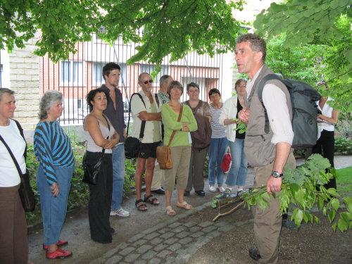 18de dag van het Park: uitleg over boom