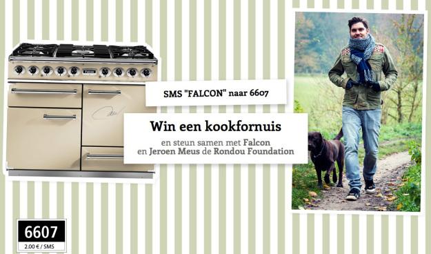 sms-falcon