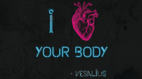 vasalius_i_love_your_body_museum_m_leuven