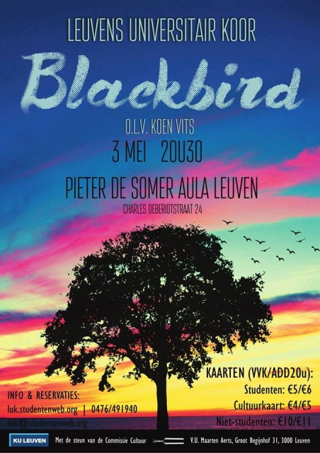 Blackbird_flyer