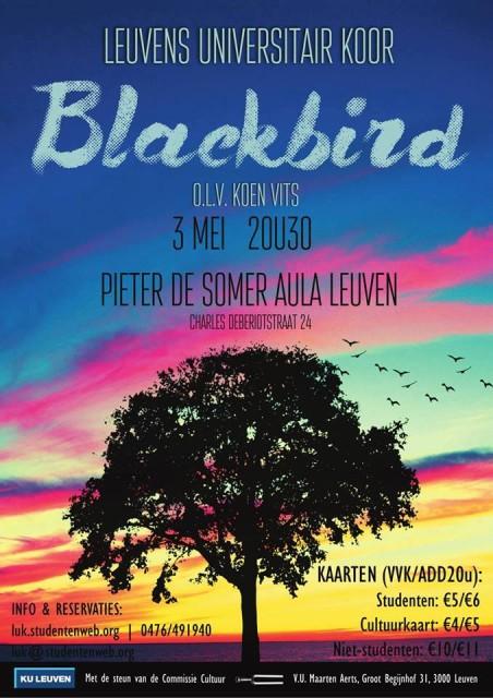 Blackbird_flyer
