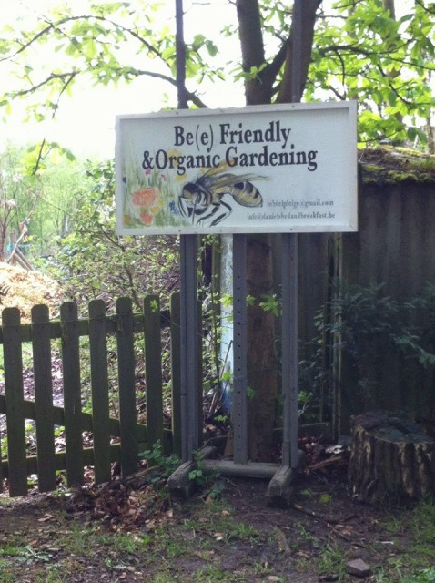 BEEfriendlygarden